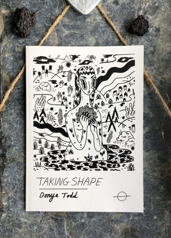 Taking Shape Illustrated Poetry Book